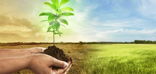 acuerdo paris cambio climatico