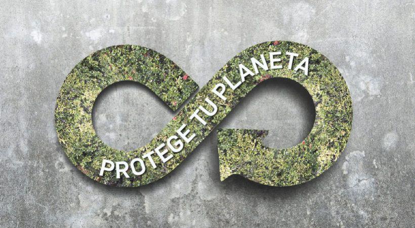 medio ambiente y economia