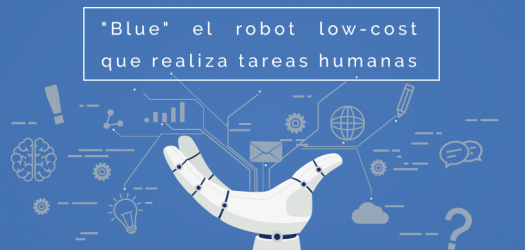 robot low-cost