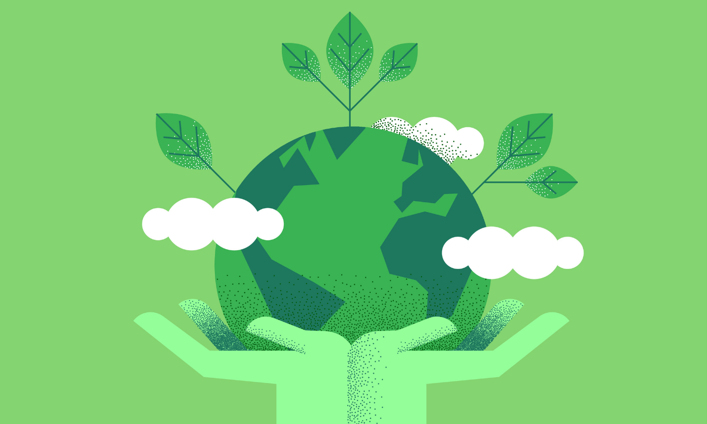 Medio Ambiente: ¿Por qué estudiarlo? | EUDE Business School